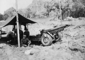 41st Inf Div 163rd Inf Regt Cannon Co 105mm howitzer yellow beach hollandia 060544 (1 of 1)