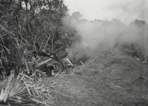 41st Inf Div C bat 218th FA fires 105mm howitzer at Arara New Guinea 052544 (1 of 1)