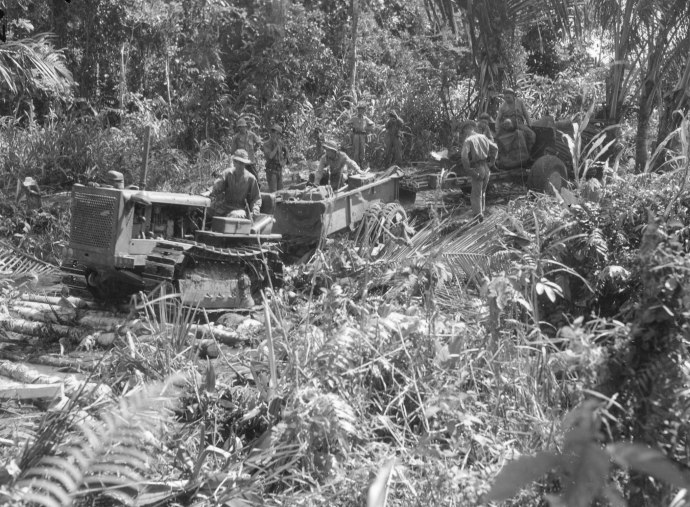 41st Inf Div fa bn tractor and 105mm in New guinea jungle 070743 (1 of 1)